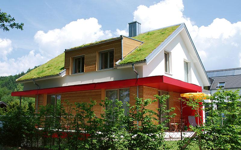 Auch private Bauherren können ihre Dächer begrünen.